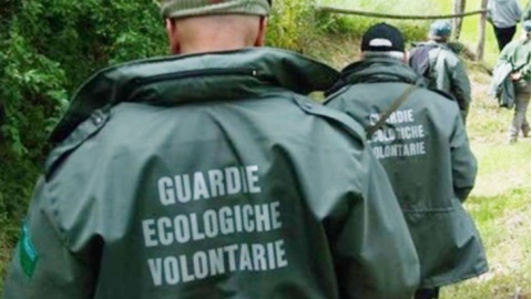 guardie ecologiche volontarie|